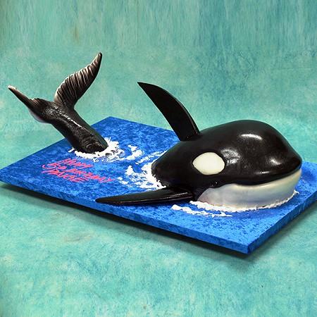 3D Killer Whale Cake