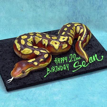 3D Snake Cake