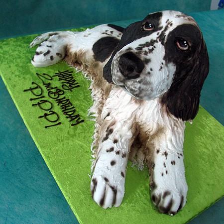 3d Spaniel Dog Cake Living Things 3d Cakes