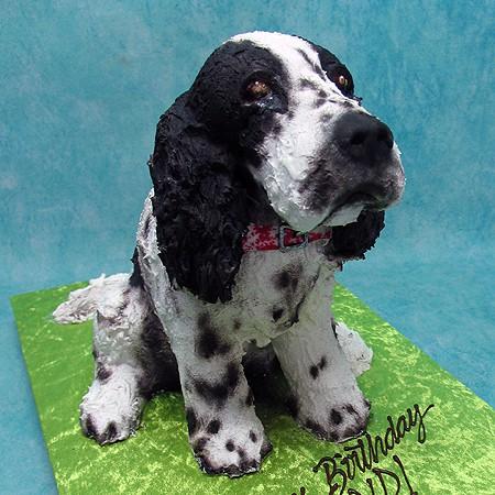 3D Spaniel Dog Cake