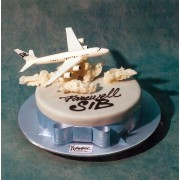 737 Boeing on A Cake
