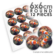 6cm Round Custom Edible Printed Image
