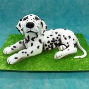 3D Dalmatian  Dog Cake