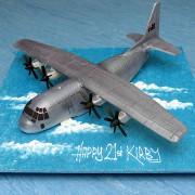 Cargo Plane Cake