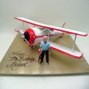 Tigar Plane Cake