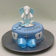 Little Elephant Cake